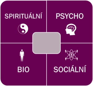 bio psycho socio spirituální bytost