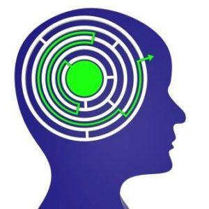 mentální mapy v mozku